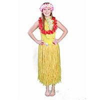Small image of hula girl beach party entertainer in Sydney from Superheroes Inc