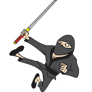 picture of Kids Party Entertainment Ninja Cartoon character